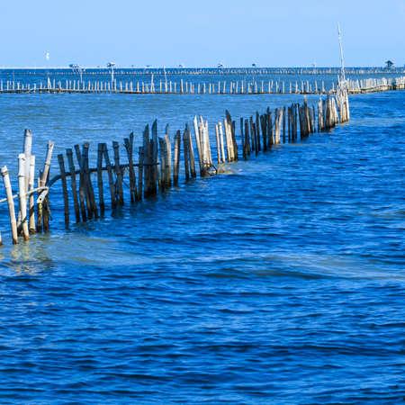fishing huts: Bamboo border in the sea, scallop field