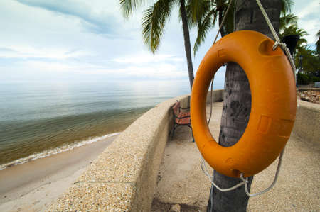 Orange Life Buoy hanging on a tree at beach side photo
