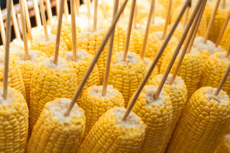 corn cob: Prepared grill corn on skewers