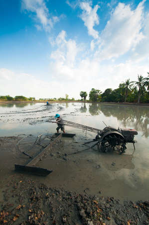 hard working farmer preparing the ground for the growth of rice in thailand Stock Photo - 17844877