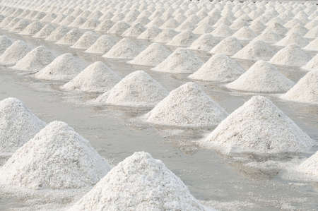Salt fields in thailand Stock Photo - 19296011