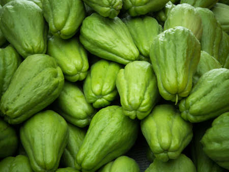 chayote: Pile of chayote fruits