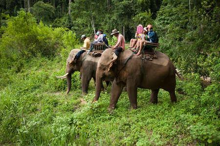 KANCHANABURI, THAILAND, MAY24   Tourists riding elephant trough jungle and cross river on May 24 2013 in Kanchanaburi, Thailand