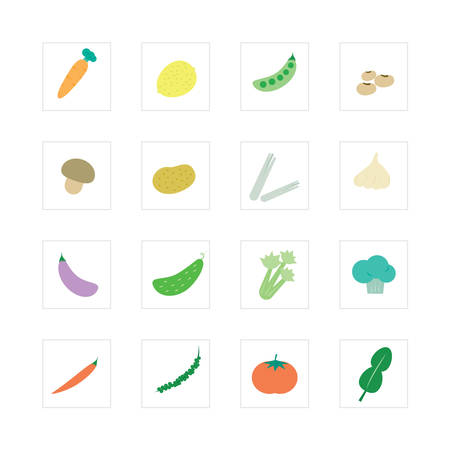 Vegetable icon set Designed for illustration, infographics, web icon, report, presentation, template and more in your business