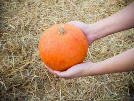 Hand hold pumpkin on straw background photo
