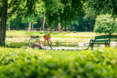 ciclismo: Bicicleta roja en el parque de verano fresco