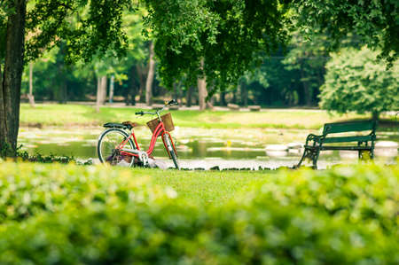 grass flower: Red bicycle in fresh summer park Stock Photo