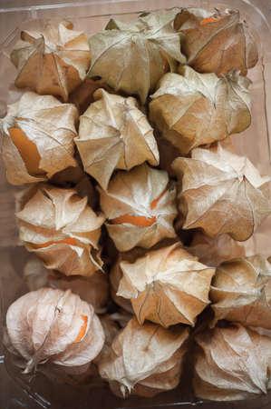 grosella: Uchuva en paquete de recipiente de plástico
