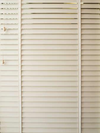 window coverings: White windows jalousie closed
