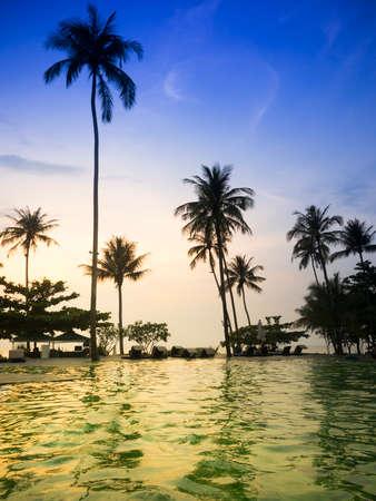 beach sunrise: Tropical pool in summer twilight