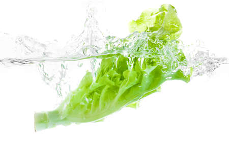 Lettuce falls under water with a splash. isolated on white background
