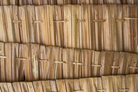 thatch: Thatch roof background Stock Photo