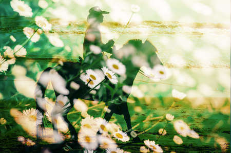 veronica flower: Horse riding with flower field, double exposure.
