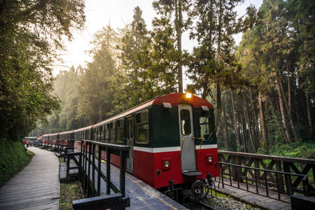 Alishan forest railway is famous for tourist attraction. Editoriali