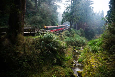 forest railway: Alishan forest railway is famous for tourist attraction. Stock Photo