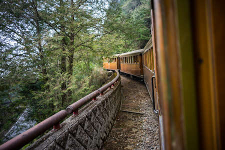 forest railway: Old train on railway forest in Alishan National Scenic Area, Taiwan.