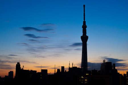 Tokyo, Japan - February 17, 2017 : Tokyo Skytree at twilight skyline. Tokyo Skytree is the tallest structure in world when built. Redakční