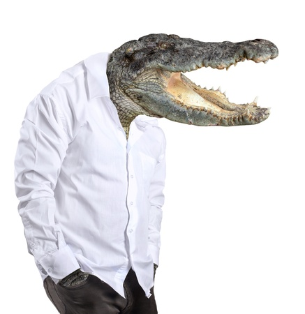 the man in a white shirt with the head of a crocodile on a white background