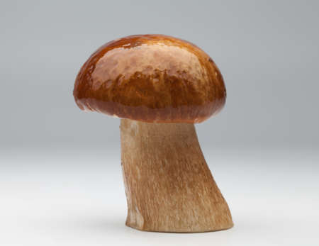 cep: one cep on gray background