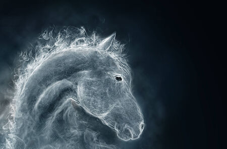 portrait of a horse. image from a smoke photo
