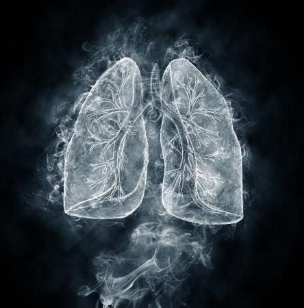 Human lungs and bronchi made of smoke