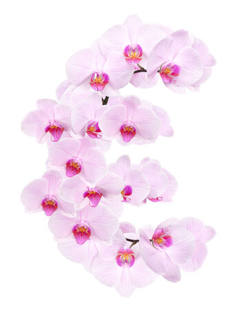 letter EUR from orchid flowers. isolated on white