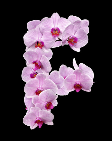 letter F from orchid flowers. isolated on black