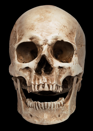 skull-open mouth. isolated on black background