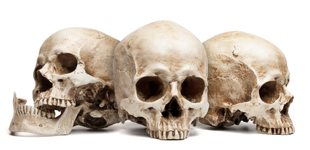 three skull isolated on white background, with shadow