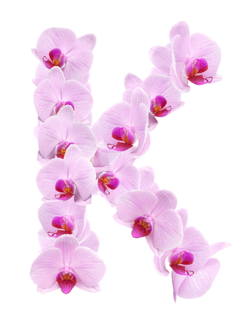 letter K from orchid flowers. isolated on white