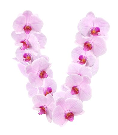 letter V from orchid flowers. isolated on white