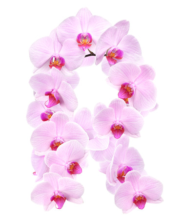 letter R from orchid flowers. isolated on white Stock Photo
