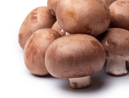ration: fresh mushroom champignon isolated on white
