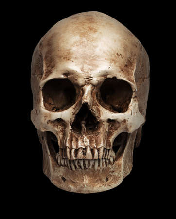 skull-close mouth. isolated on black background, with shadow
