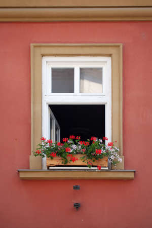 A beautiful red flower is standing on the window of the house
