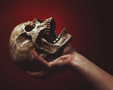 hand holding a skull on a black-red background