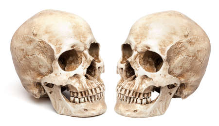 skull-close mouth. isolated on white background, with shadow