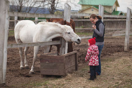 little girl with her mother stroked the horses in the village.