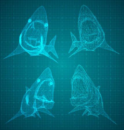 vector 3d shark from a triangular grid. predator on blue background
