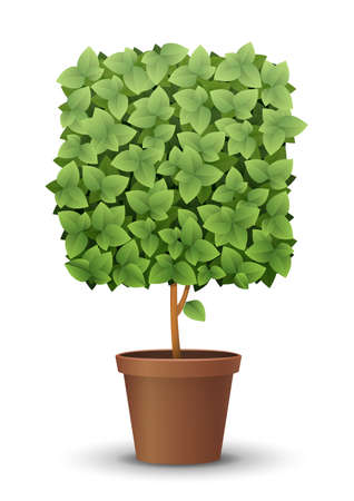 vector large green tree grows from a flowerpot. concept of spring and summer, harvest and ascent. topiary