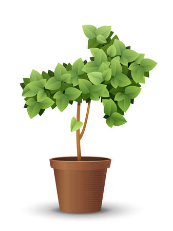 vector large green tree grows from a flowerpot. concept of spring and summer, harvest and ascent