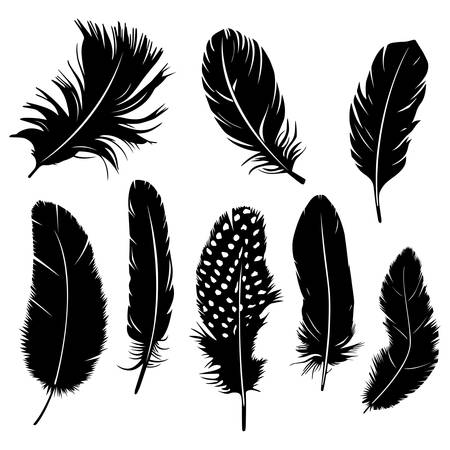 Set of feather clipart