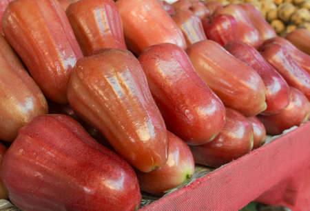 wax sell:   asian rose apple sell in the market