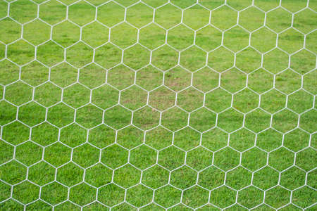 abstract soccer goal net pattern with green grass behind Stock Photo
