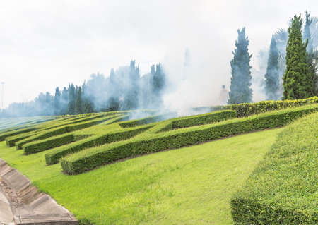 man Fogging insecticide to kill the Aedes mosquito in the public garden photo