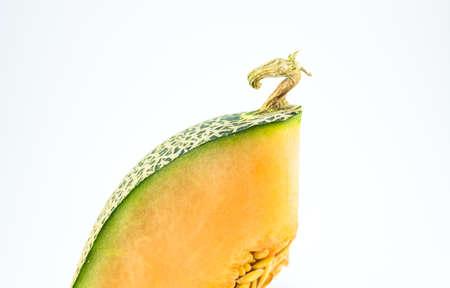 photo of fresh cantaloupe on white background photo