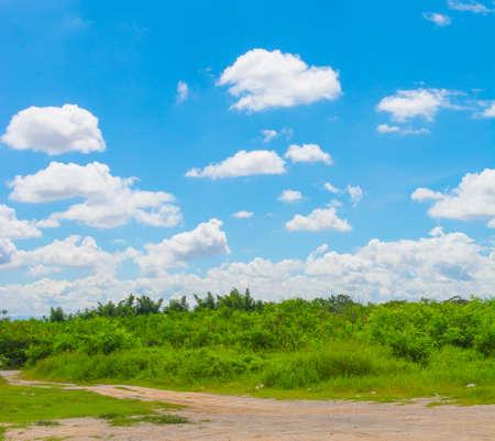 ���clear sky���: clear sky day