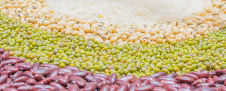 close up shot of multigrains for background image photo