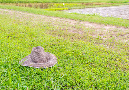 image of old farmers hat on grass field. photo