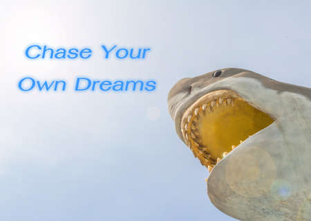 sky metaphor: metaphor of Chase Your Own Dreams with great white shark in the sky.